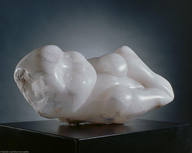 Foetus, 50x30x25 ( cm )